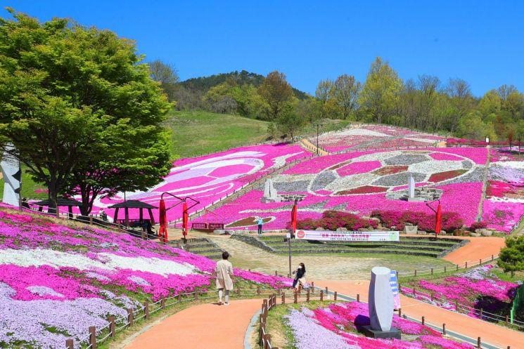 생초국제조각공원 꽃잔디 [이미지출처=산청군]