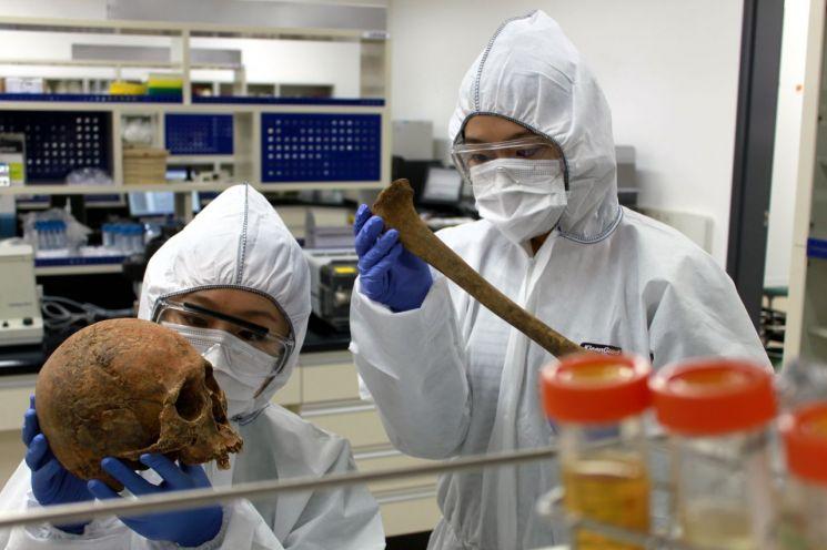 유전자원(고DNA실험실-인골조사)