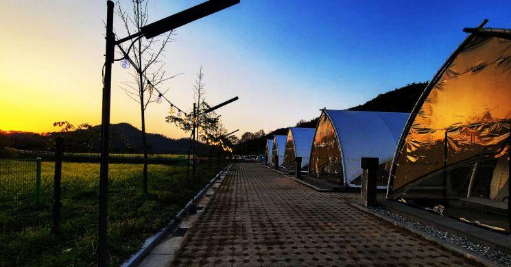 자연 속 힐링공간 함평 대동제생태공원 오토캠핑장 문 열어