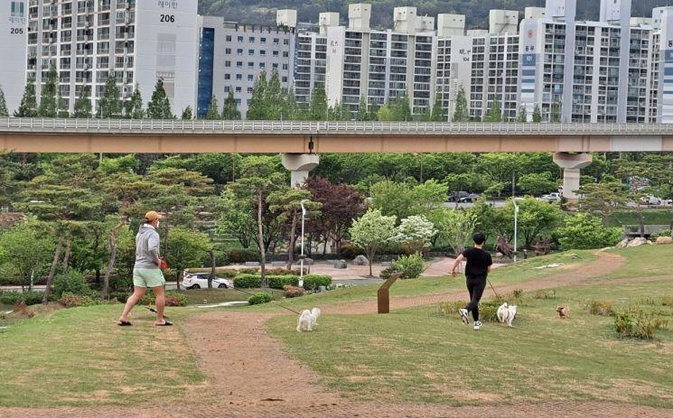 경남 김해시가 동물복지 5개년 종합계획을 통해 동물복지를 향상한다.[이미지출처=김해시]