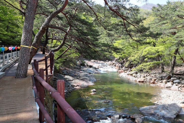 산청 대원사 계곡길 [이미지출처=산청군]