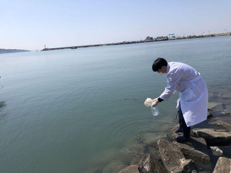 지난 12일 당진시 한진포구에서 충남도 보건환경연구원 관계자가 바닷물을 채수하고 있다. 충남도 제공