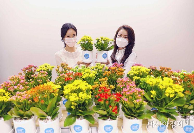 동양생명은 창립기념일을 맞아 지역사회 독거노인을 위해 꽃화분을 심어 전달하는 '화(花)를 품은 봄날' 행사를 진행했다고 20일 밝혔다.