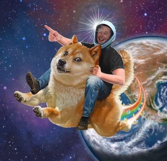 일론 머스크 테슬라 공동창업자 겸 최고경영자(CEO)가 '도지코인'의 마스코트 '시바견'을 타고 우주로 떠나고 있다. 사진=온라인커뮤니티