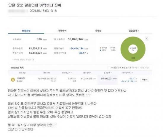 '도지코인'에 투자했다가 큰 돈을 잃었다는 한 가상화폐 투자자의 글. / 사진=인터넷 커뮤니티 캡처