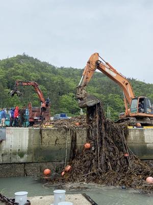진도군 해상에 표류하고 있는 쓰레기 수거 활동을 했다. (사진=진도군 제공)