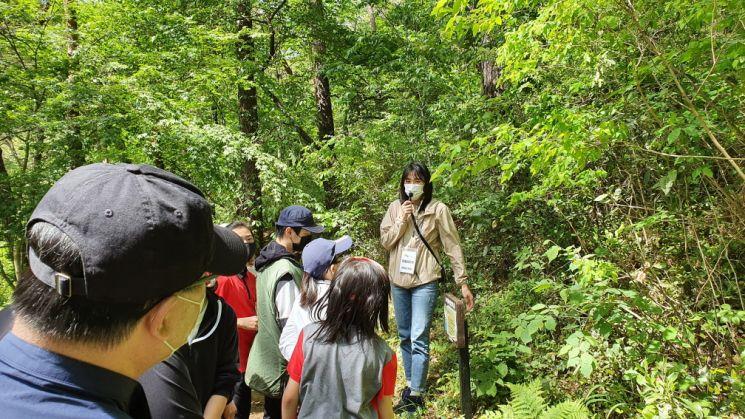 지난해 환경성질환 숲 캠프에서 참여자들이 숲 해설가의 도움을 받으며 숲 체험활동을 하고 있다. 한국산림복지진흥원 제공