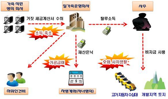 법인 돈 빼돌려 수백억 땅쇼핑·사치생활…부동산탈세 289명 세무조사