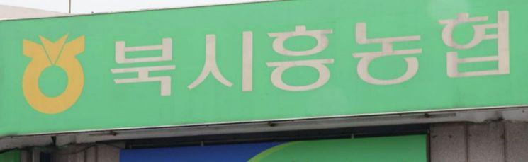 (자료: 연합뉴스TV 캡처화면)