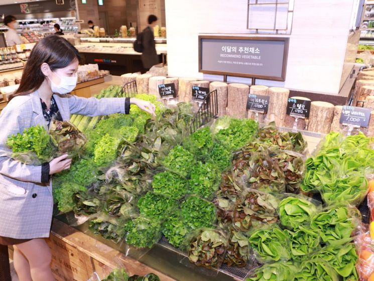 14일 서울 중구 소공동에 위치한 롯데백화점 본점 지하 1층 식품관에서 고객이 '유럽형 채소'를 둘러보고 있다(사진제공=롯데백화점).
