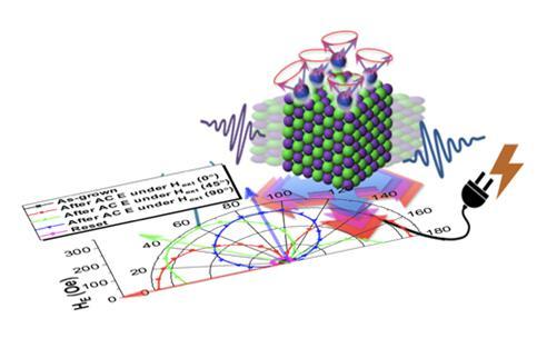 (그림설명) 물질의 결정구조에 인가되는 기계적 진동에 의해 원자별 자기 결합 및 자기 배열 상태에 의해 결정되는 교환바이어스 특성이 여러 방향으로 설정될 수 있음을 의미한다.