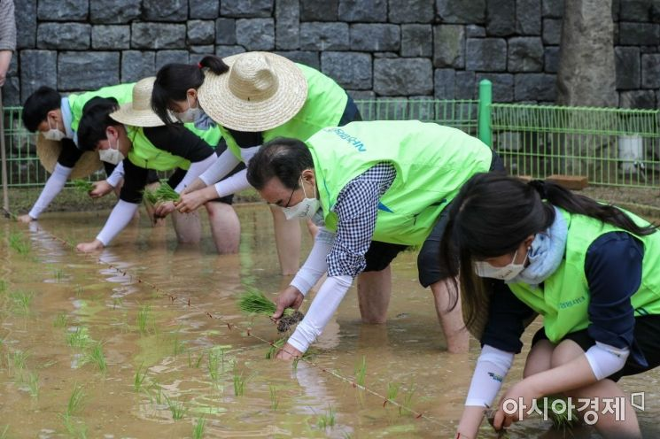 [포토]농협, 도심 속 전통 손모내기 행사 개최