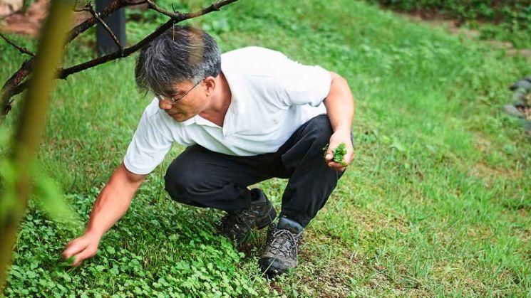 자연 요리 연구가로 활동했던 '방랑식객' 임지호가 12일 심장마비로 별세했다. 향년 65세. [사진=영화 '밥정' 스틸컷]
