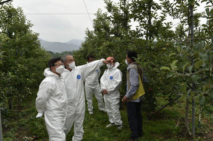 농업기술원장, 과수화상병 현장 점검 등 확산방지 총력