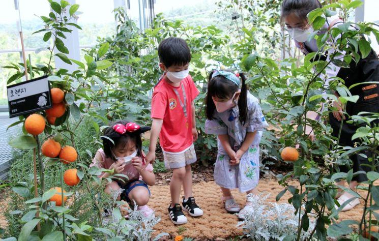 강감찬도시농업센터에서 도시농업 체험하는 아이들