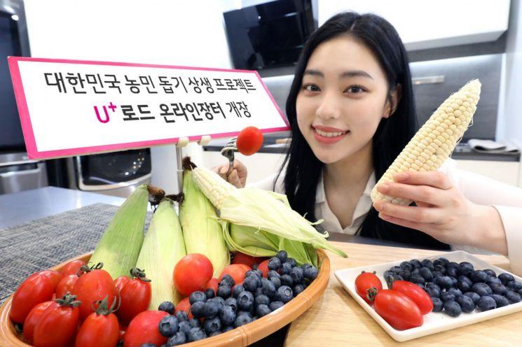 """""""지역농가 살려라"""" LG유플러스, 온라인장터 개장…라이브커머스도"""