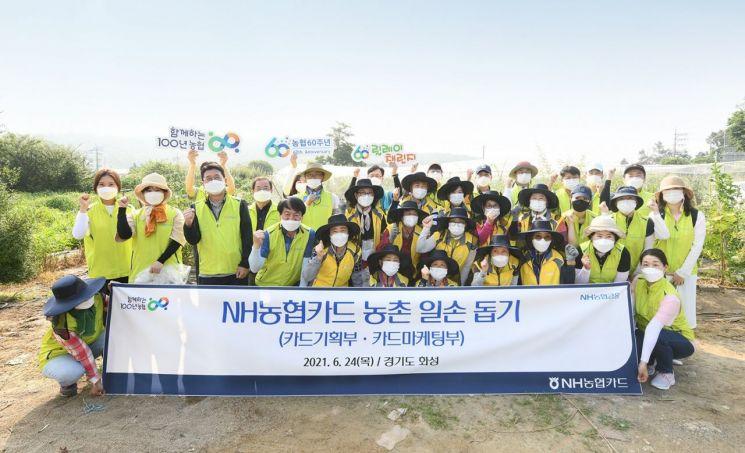 24일 NH농협카드 임직원들이 경기도 화성시 봉담마을 포도 재배농가를 방문해 농촌일손돕기 봉사활동을 펼쳤다.