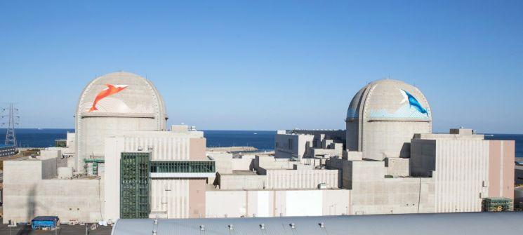 """IAEA """"2050년 원전 더 는다""""…文 정부만 탄소중립 한다며 탈원전 '역주행'"""