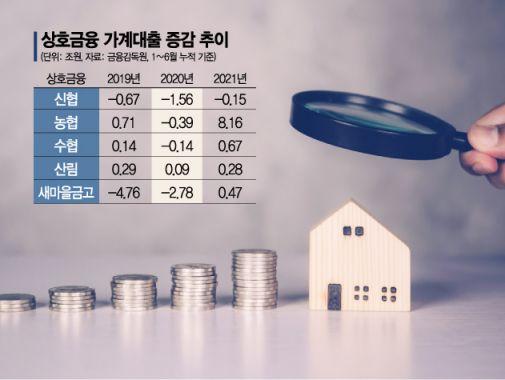 금융당국, 가계대출 폭증 '농협중앙회' 핀셋 관리