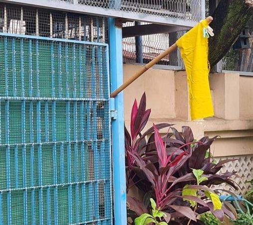 노란 깃발을 내건 양곤의 한 가정집 [이미지출처=연합뉴스]