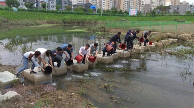 김해시, 미꾸리 방류로 친환경 해충 구제·수생태 복원 '일석이조'