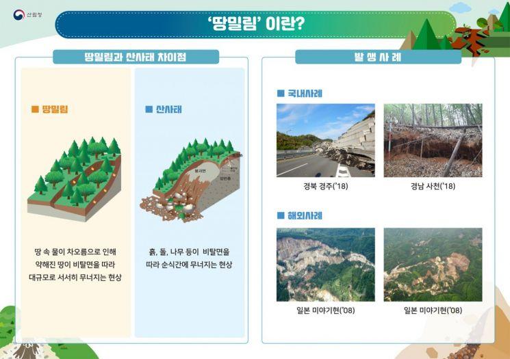 산림청 제공