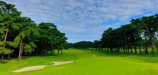 도쿄올림픽 골프 개최지 가스미가세키골프장은 홀마다 소나무가 즐비하다. 사진출처=가스미가세키골프장 홈페이지