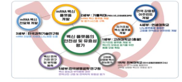 mRNA백신 플랫폼 구축 및 유효성 평가기술 연구체계