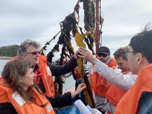 해외 해조류 전문가들이 완도 해조류 양식장을 찾아 미역과 다시마를 살펴보고 있다. (사진=완도군 제공)