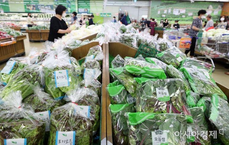 [포토]무더위로 채소값 상승