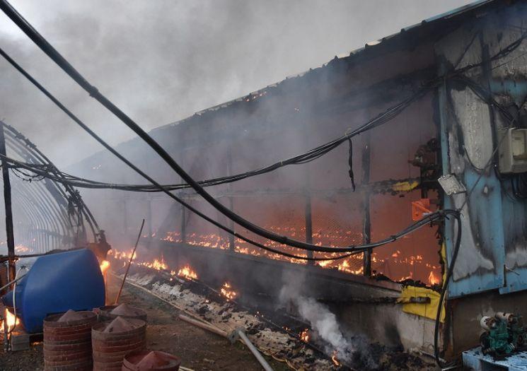 지난 6월 공주시 신풍면 소재의 한 양계장에서 전기적 요인에 의한 화재가 발생했다. 충남도 소방본부 제공