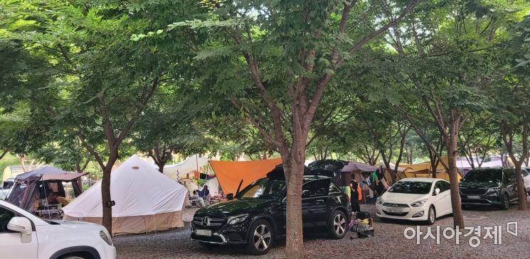 수도권 지역의 사회적 거리두기 4단계 시행 이후 3번째 주말이었던 지난 31일 강원 영월군의 한 오토캠핑장이 야영객들이 설치한 텐트로 가득 차 있다./사진=유병돈 기자 tamond@