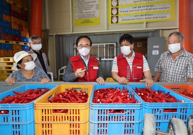 임실군, 532개 농가 대상 '홍고추 수매' 진행