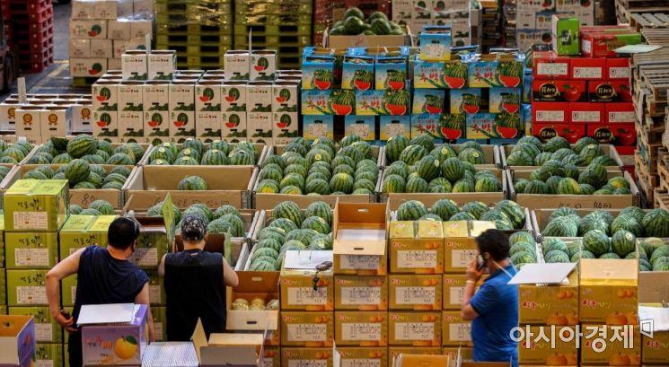 [포토]경매 기다리는 수박