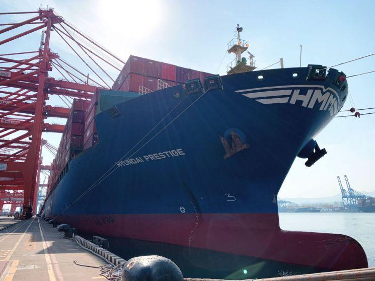 5000TEU급 컨테이너선 'HMM 프레스티지호'가 부산항 신항 HPNT에서 국내 수출기업들의 화물을 싣고 있다.