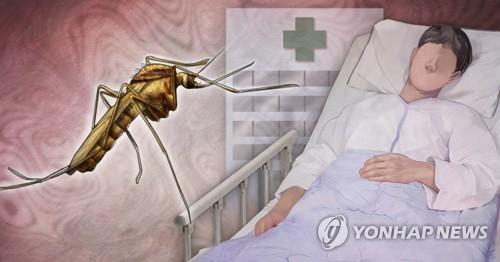 질병관리청, 전국에 일본뇌염 경보 발령