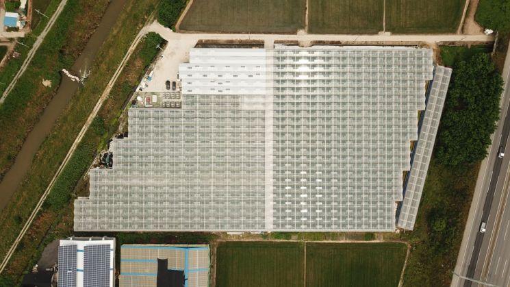 경기 평택에 위치한 그린플러스의 '케이팜.' 회사는 2만4132㎡(7300평) 규모에 이르는 케이팜에서 다양한 기술을 검증하고 있다. [사진제공 = 그린플러스]