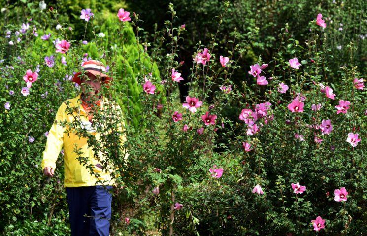 고산자연휴양림의 무궁화테마공원