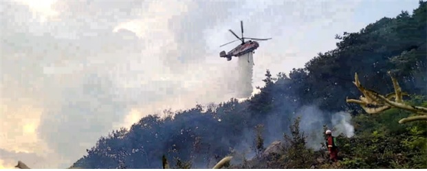 산림청 산불진화헬기가 산불현장에서 진화활동을 벌이고 있다. 산림청 제공