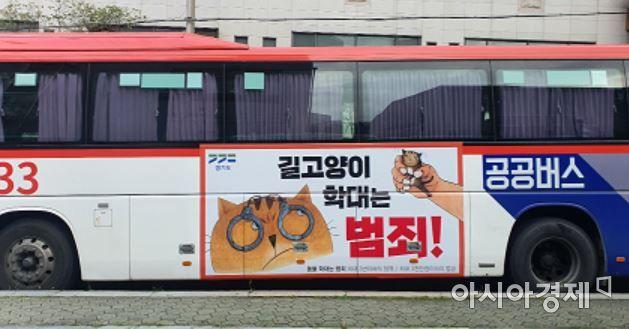 길 고양이 학대 방지 공공버스 홍보 [경기도]