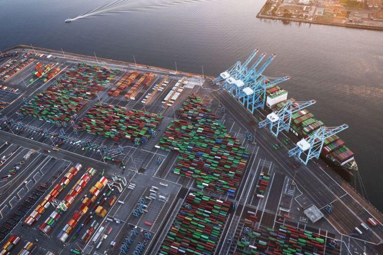 꽉 막힌 글로벌 물류망…현대차 입항에 6개월