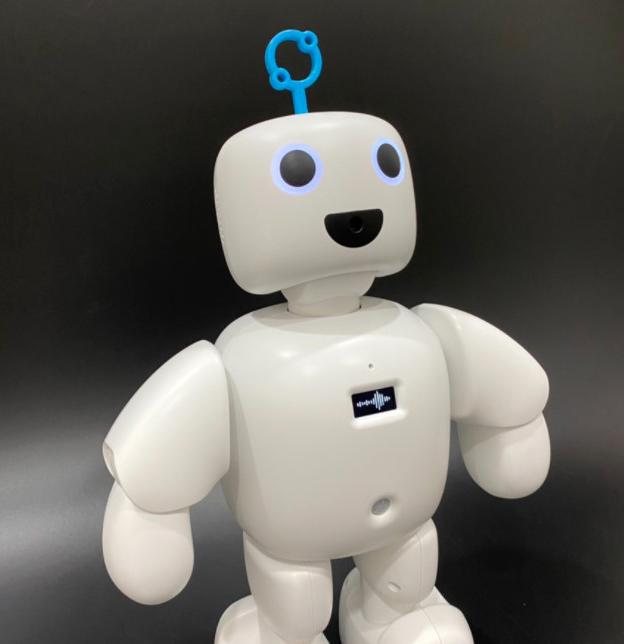 상용화 AI로봇 '파이보'
