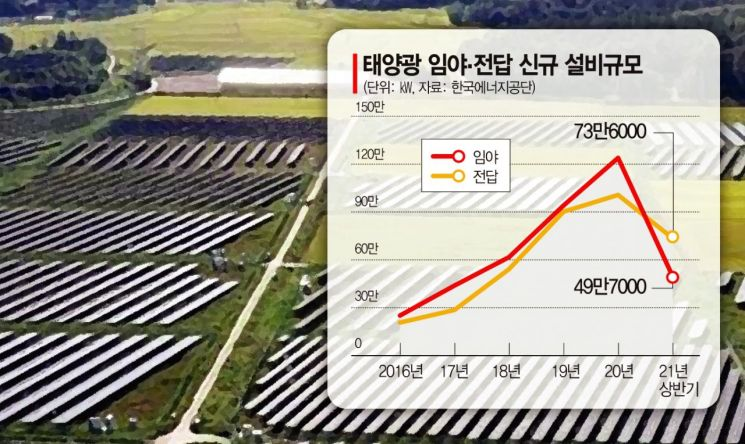태양광 확대에 올 상반기 사라진 논밭 220만평…'축구장 1000개' 규모