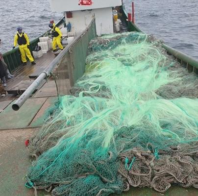 목포해경이 망목 규정보다 작은 그물을 확인하고 있다. ⓒ 아시아경제