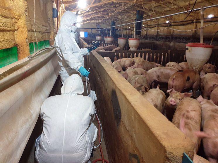한국원자력연구원 연구원들이 축산시설에서 악취를 모니터링하고 있다.