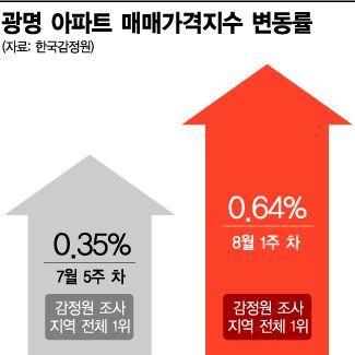 """[부동산Eye] 수상한 광명 아파트값…""""오를 때 됐다"""" """"너무 뛰니 걱정"""""""