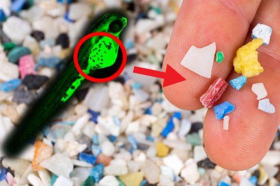 몸속에 들어온 미세 플라스틱, 세포를 공격한다?