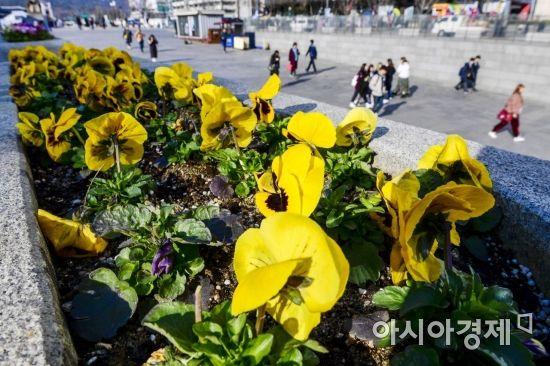 [포토]'그래도 봄'
