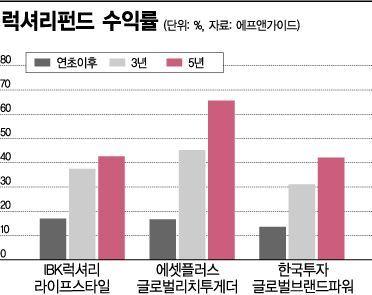 루이뷔통·에르메스 등 담아 올 평균 수익률 16% 대박