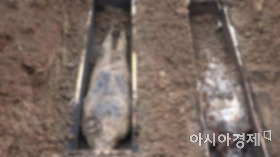 [오해와 진실] 지독했던 시어머니 관 열어 보니…기묘한 풍수의 세계